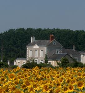 Centre de loisir, ancienne école de Chaveignes